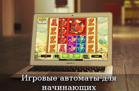 Игровые автоматы для начинающих