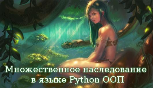 Множественное наследование в Python
