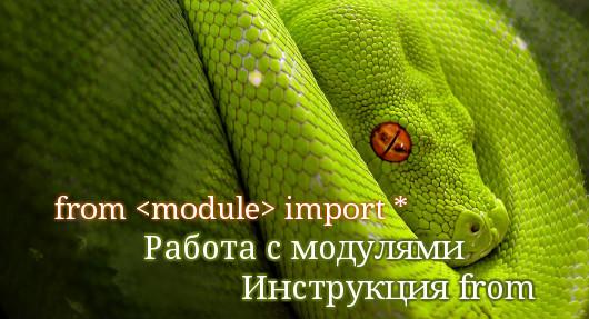 Инструкция from - Python